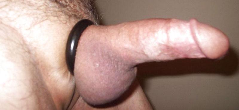 mascul penis erect