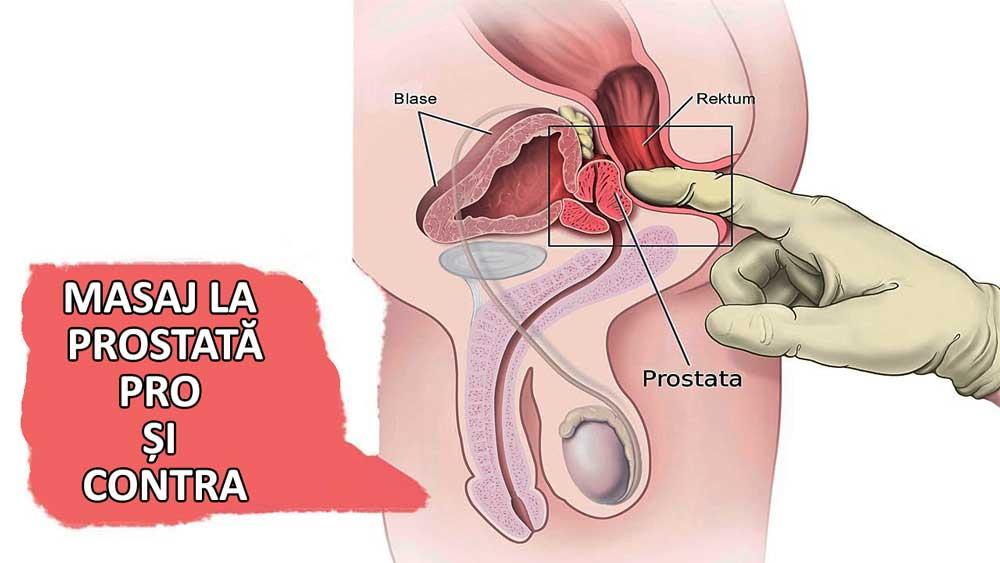 erecția de dimineață la bărbați durează partenerul are un penis lung