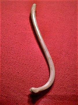 ce fel de penisuri există după o erecție proastă