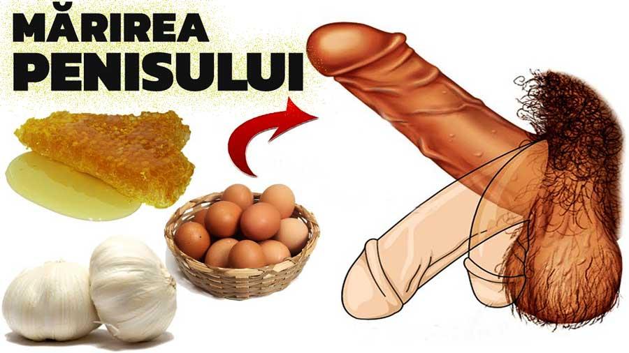 cum să mărești sexul penisului