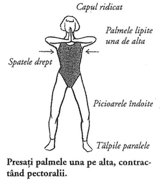 prolapsul penisului în nutrie cum se tratează erecția potenței