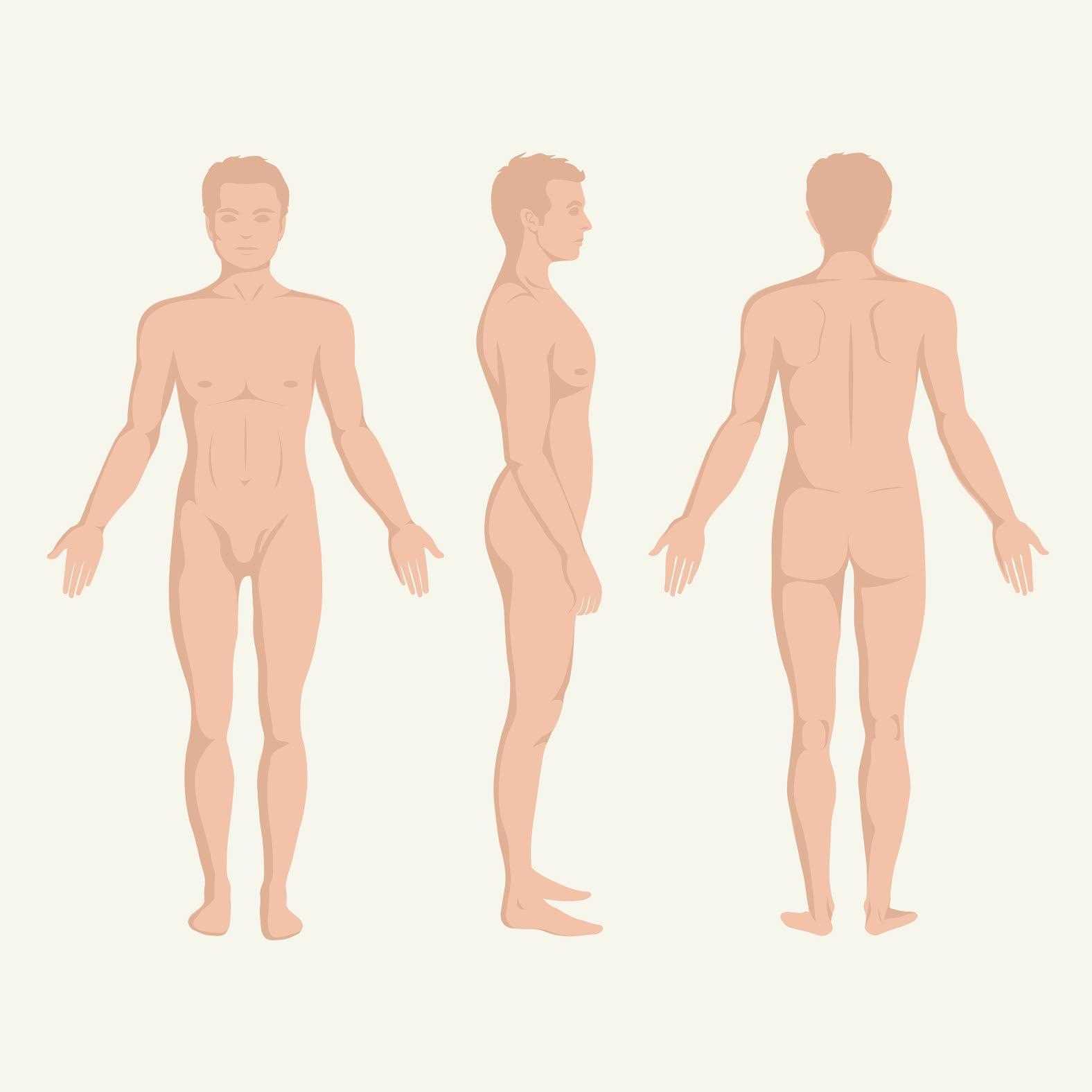 tipuri de penis normal creșterea penisului pubertății