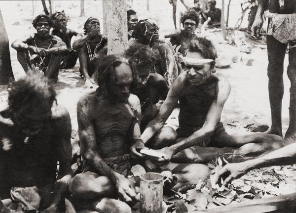 penis aborigen