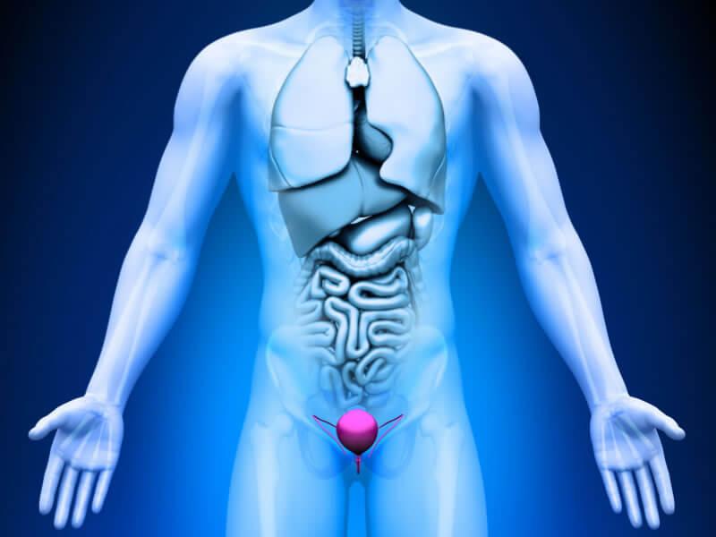 Relație de prostatită și erecție