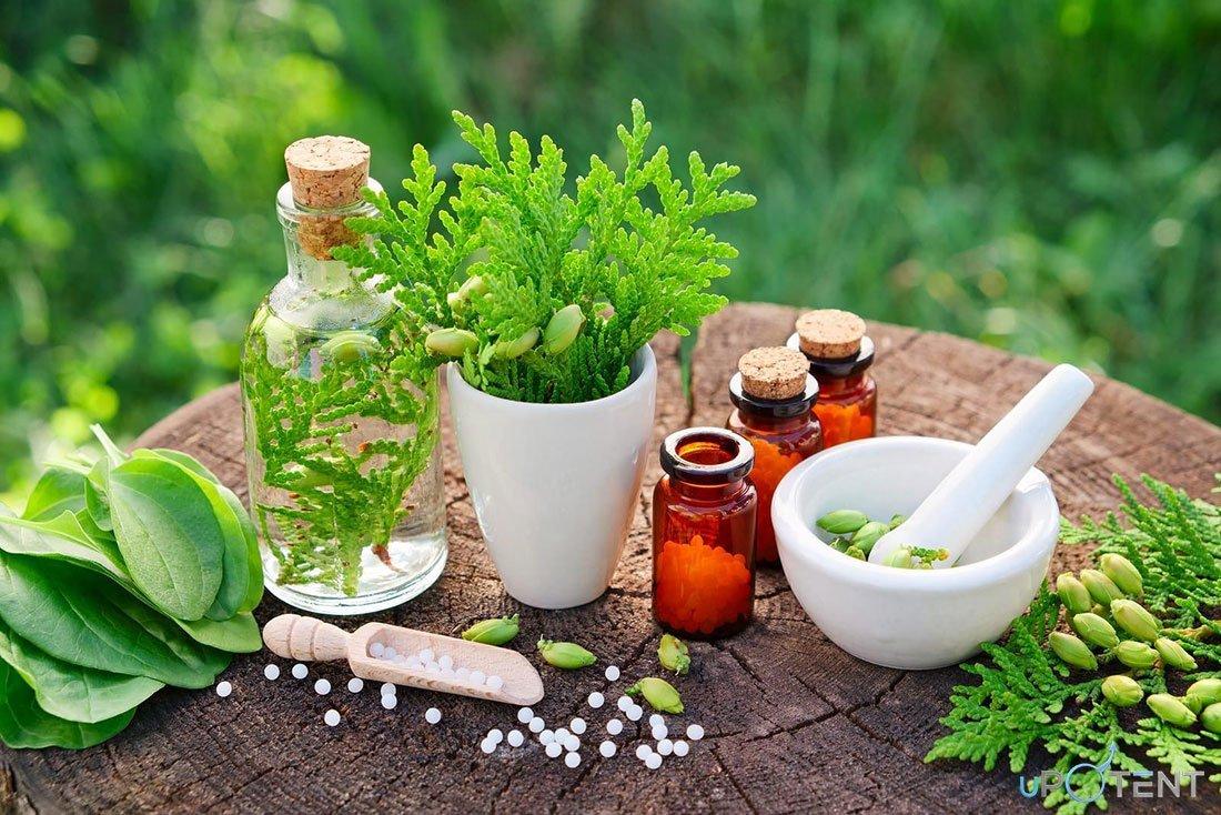tratament pe bază de plante disfuncție erectilă îmbunătăți erecția