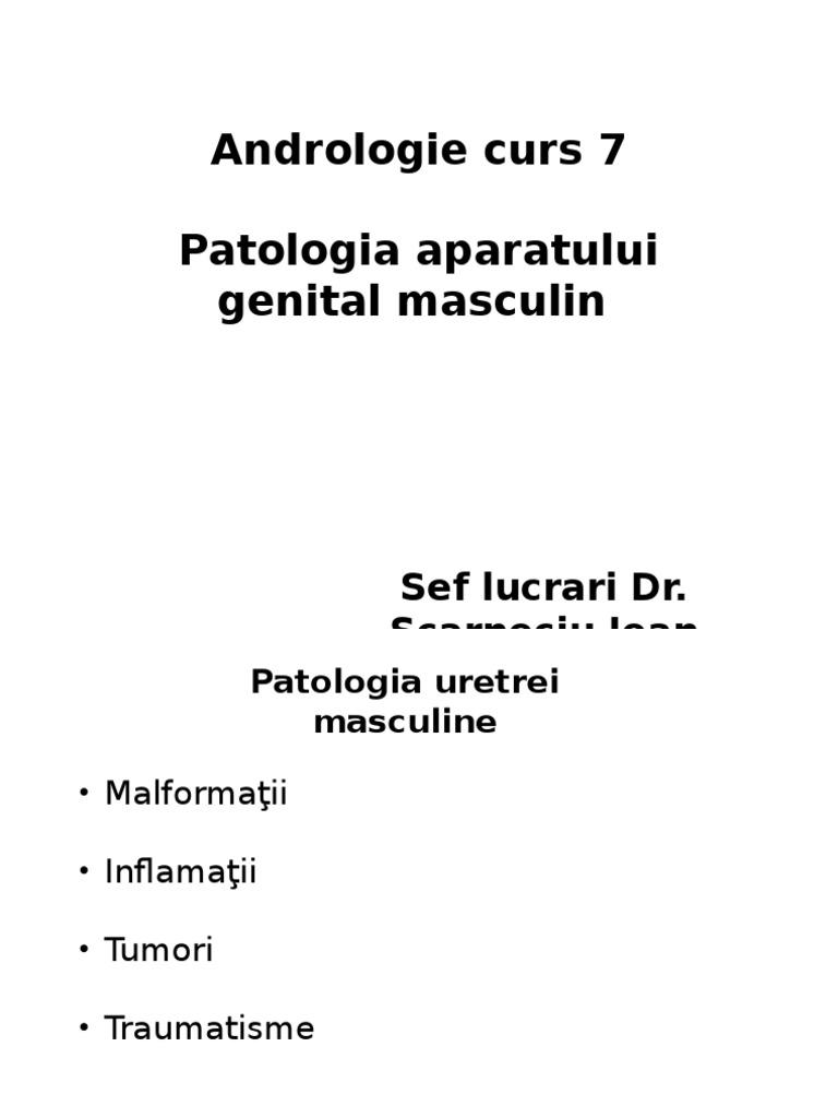 penis cum se vindecă curbura întări o erecție