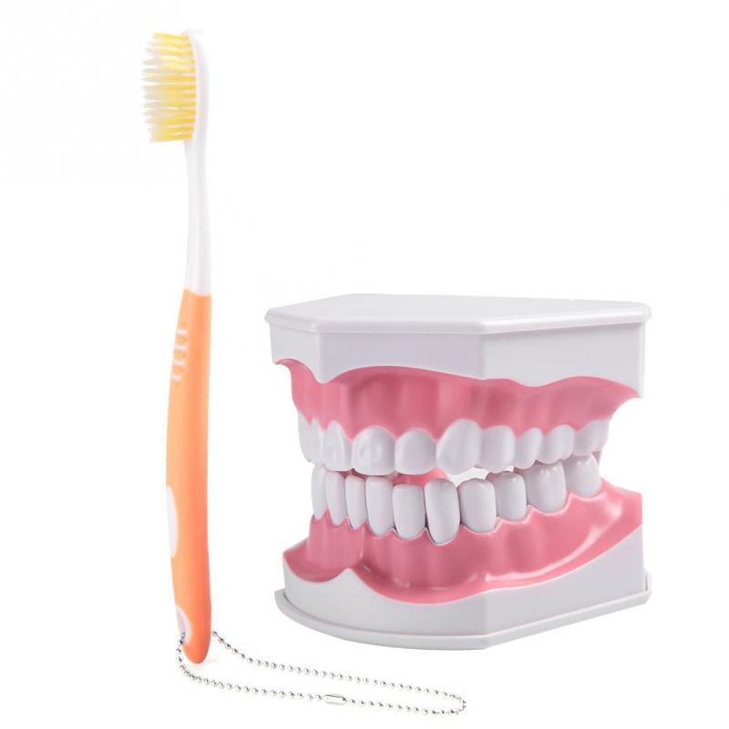 periuță de dinți în penis