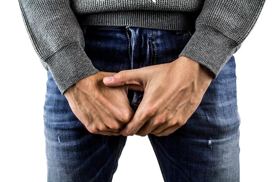 când este erect, penisul este orizontal