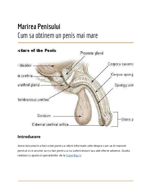cum să- ți faci penisul mai lung sfaturi pentru penis în acțiune