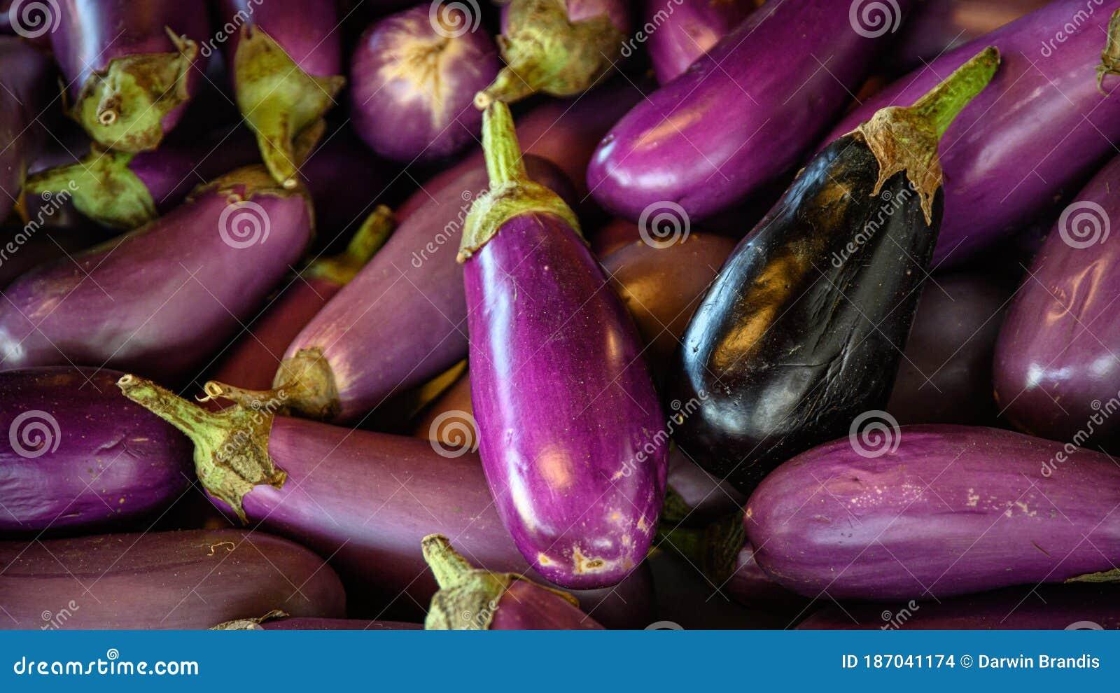 penis violet